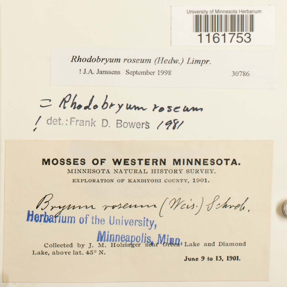 Consortium Of North American Bryophyte Herbaria Detailed Collection